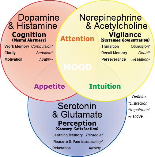 Nootropics brain chemistry 101 neurotransmitters neurotransmitters work together ccuart Image collections